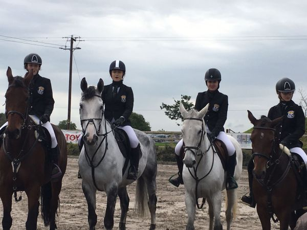 Equestrian Mullingar 2017 3.jpg